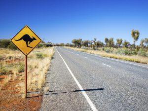 Straße in Australien mit Känguruschild