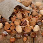 Chestnut: Der Spezialist für Kastanien und Nüsse