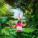 Moët Rosé Flamingo: Do you dare?