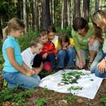 Natur.Erlebnis.Tage 2016: Kräuter, Korn und Krummstiel
