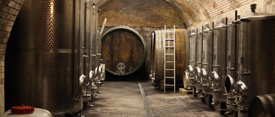 Ein Blick in den Weinkeller