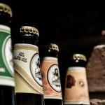 Bier-in-Aktion.at: die besten Angebote aus den Flugblättern