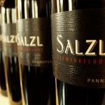 Eigenständige, fruchtbetonte Weine: Weingut Salzl